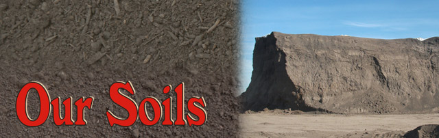 Our Compost Is Also Created At Recycling Center Finely Sifted Topsoil For A Top Quality Product
